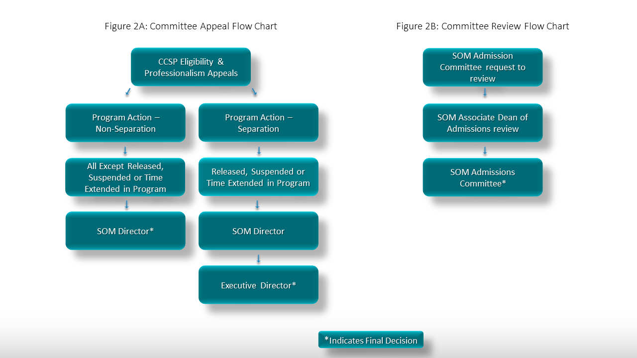 committee appeal flow chart