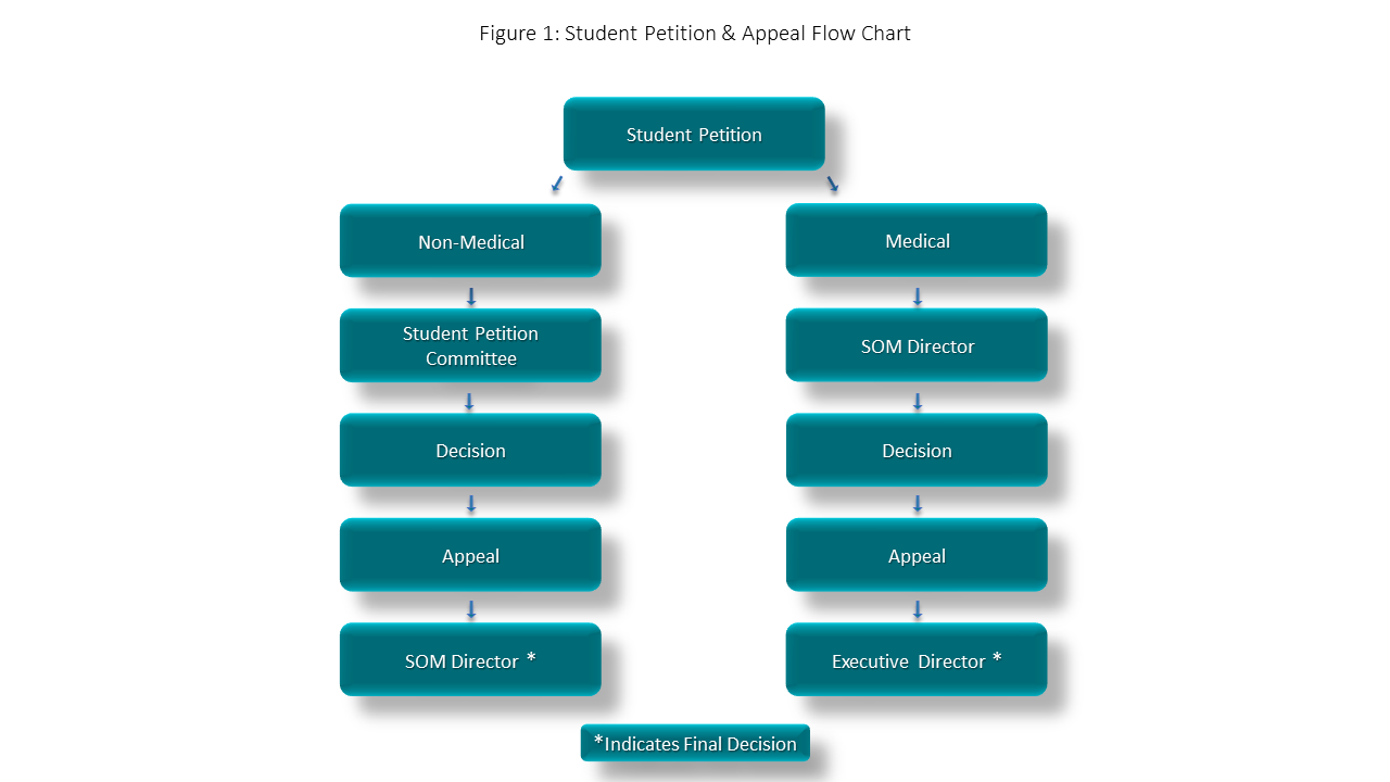 student petition and appeal flow chart